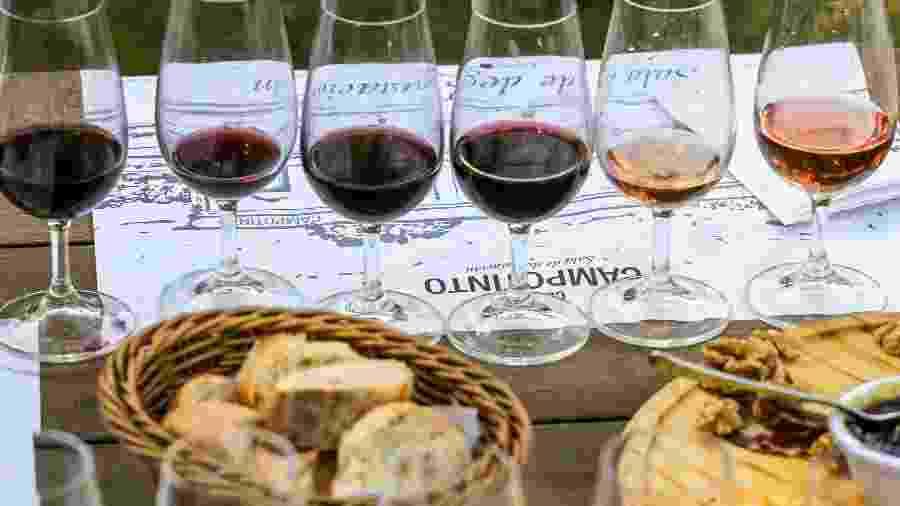 Degustação de vinhos e queijos, na Bodega & Posada Campotinto - Caio Ferrari