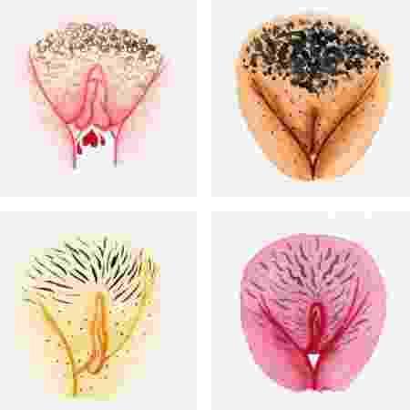 Reprodução Instagram/The Vulva Galery