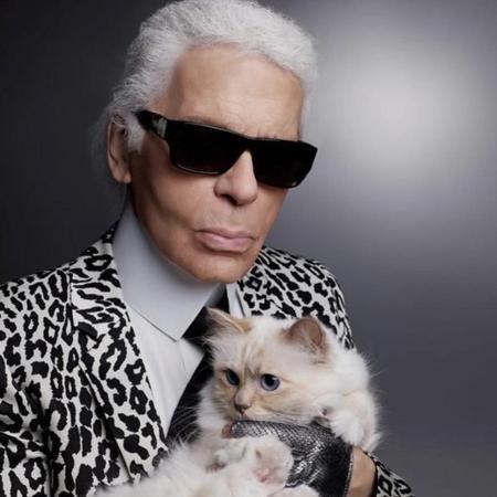 Karl tinha uma relação muito próxima com a sua gata Choupette - Reprodução/Instagram