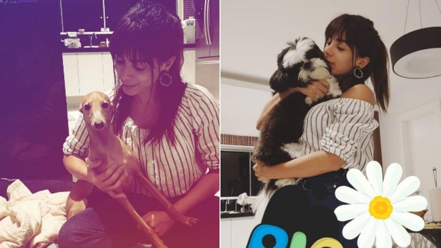 Anitta com seu novo visual - Reprodução/Instagram