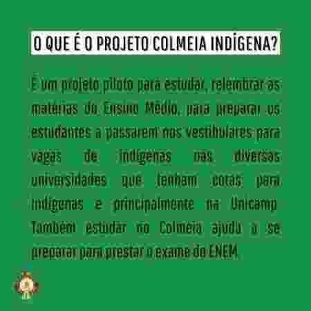 2 - Acervo Colmeia Indígena/Facebook - Acervo Colmeia Indígena/Facebook