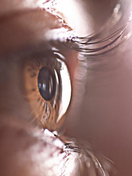 Estudos em animais mostraram que técnica pode salvar ou restaurar a visão - iStock