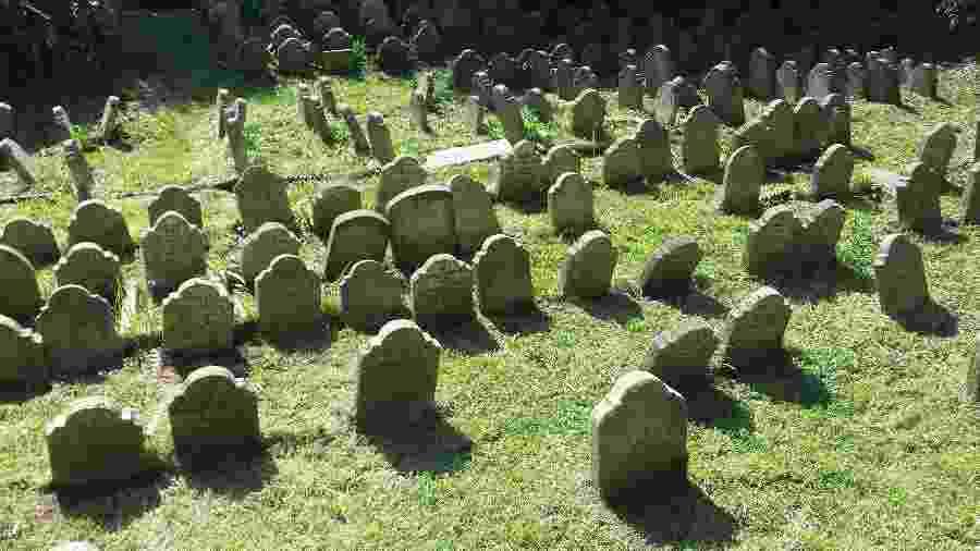 Cemitério no Hyde Park, na capital inglesa, abriga centenas de túmulos de animais de estimação  - Divulgação/The Royal Parks