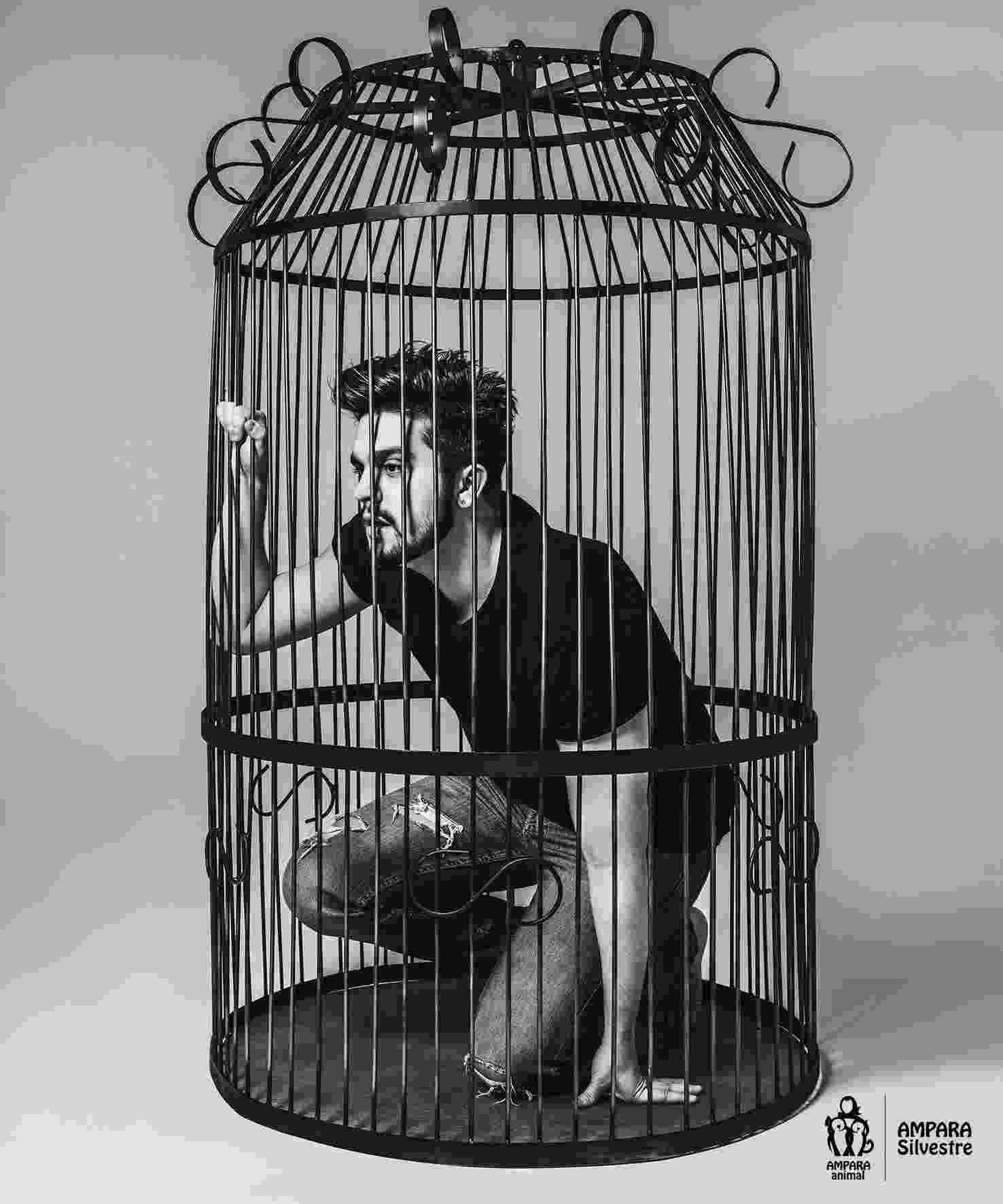 """Luan Santana na obra """"Engaiolados"""" - Divulgação"""