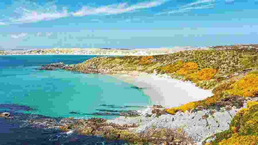Praia em Gypsy Cove, nas ilhas Falkland, Malvinas - Cheryl Ramalho/Getty Images/iStockphoto