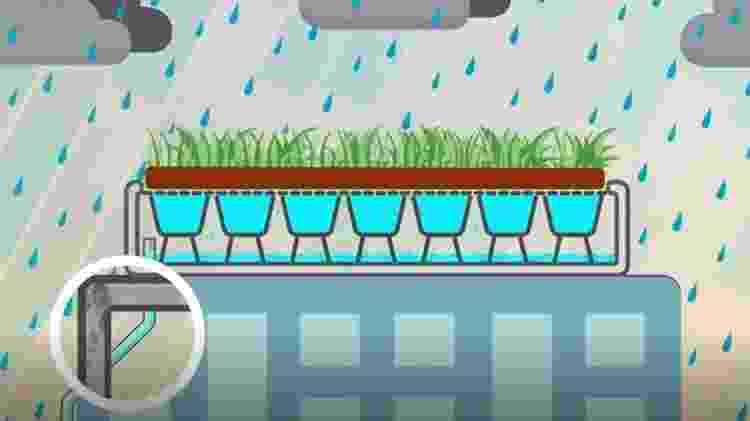 Além de promover a drenagem urbana com o amortecimento da água da chuva, a estrutura também age como purificador do ar - Divulgação - Divulgação