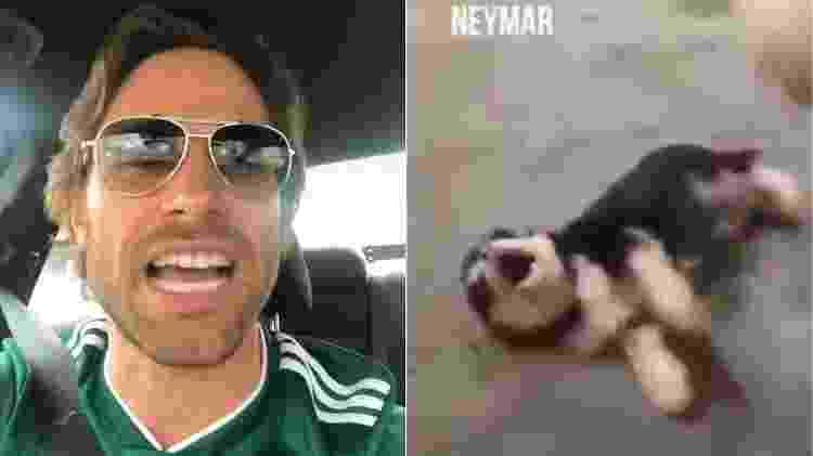 Sebastian Rulli se revolta contra Neymar e o compara a um cãozinho assustado - Montagem/UOL/Reprodução/Instagram - Montagem/UOL/Reprodução/Instagram
