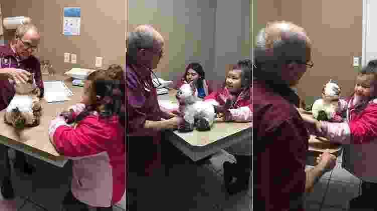Dr Maier cuida de Donnie ao lado de Jazmine - Reprodução/Facebook - Reprodução/Facebook