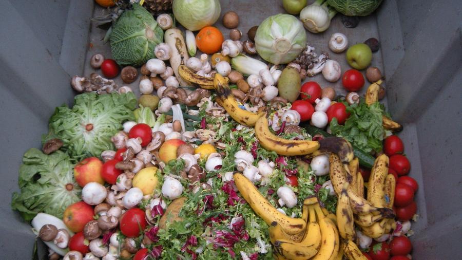 Recipiente de lixo com frutas e legumes  - Wikipedia