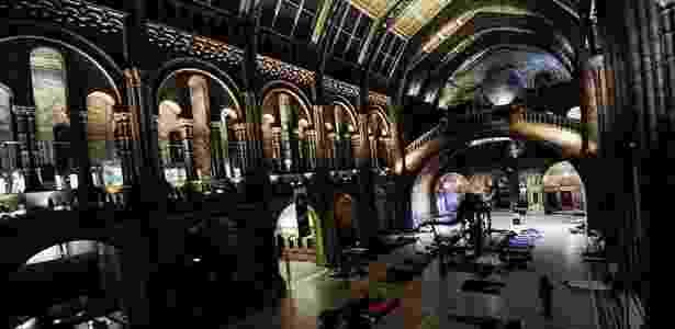 O hall do museu londrino é uma obra de arte da era vitoriana - Divulgação/Natural History Museum - Divulgação/Natural History Museum