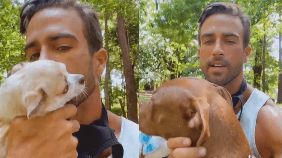 Erasmo Viana mostrou passeio com cachorros que adotou com a ex, Gabriela Pugliesi - Reprodução/Instagram