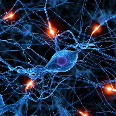 O estudo utilizou um modelo experimental de esclerose múltipla para analisar o papel do SNS em doenças autoimunes - iStock