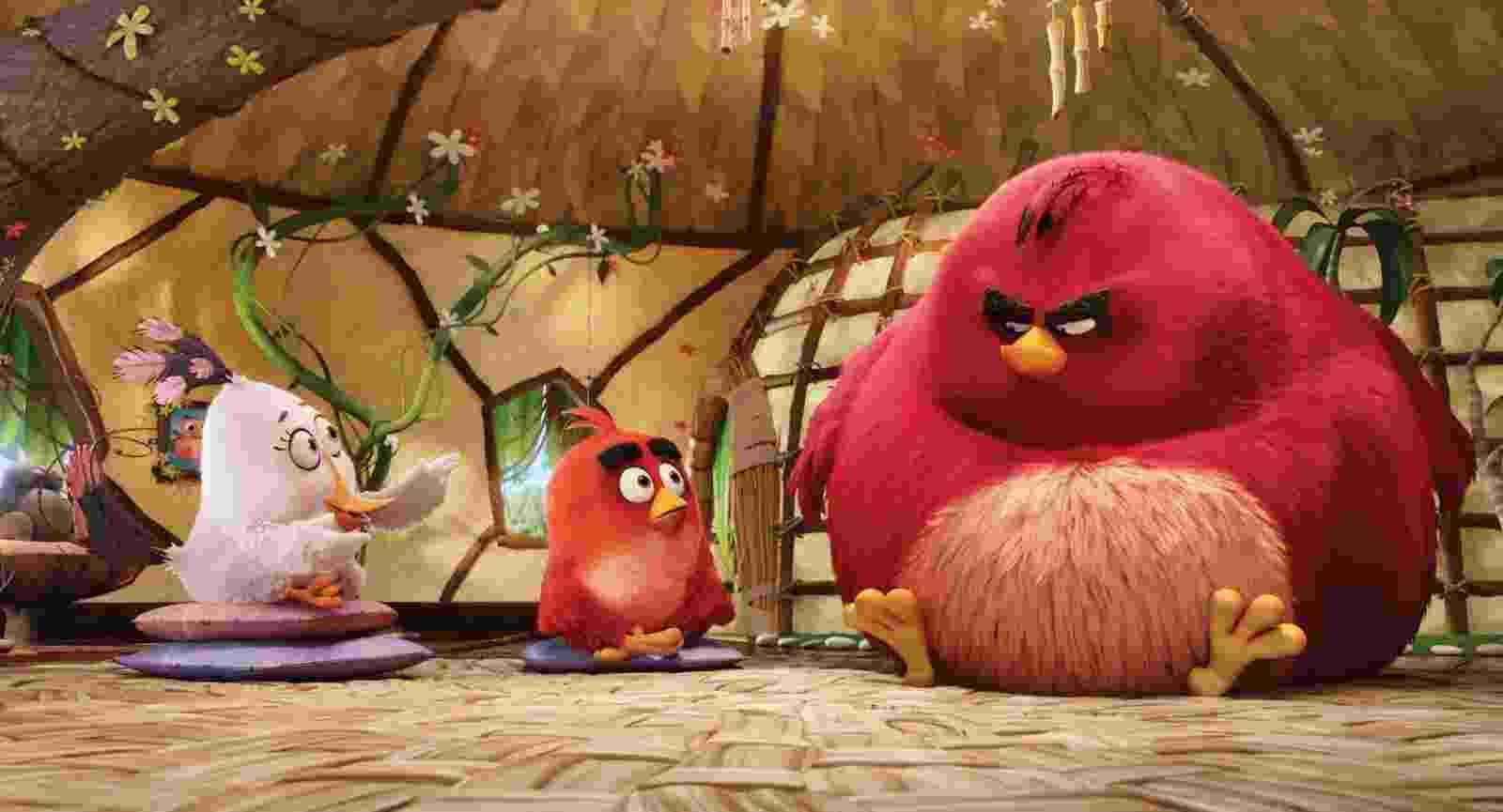 """Cena do filme """"Angry Birds: O Filme"""" - Divulgação"""
