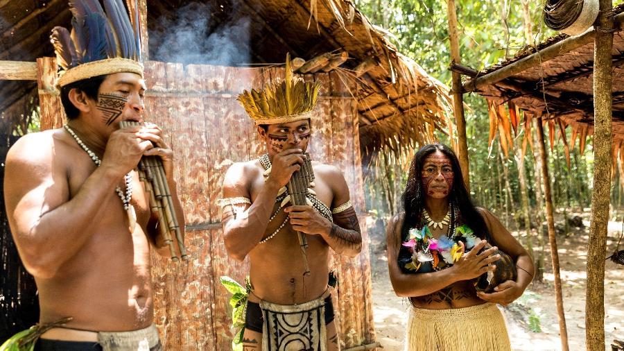 A pesquisa ouviu 533 jovens, de 15 a 22 anos de idade, de oito regiões amazônicas - iStock