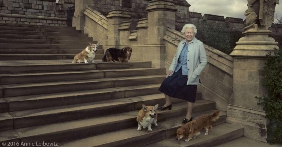 20.abr.2016 - A rainha Elizabeth, que completa 90 anos nesta quinta (21), posa para fotos ao lado de seus cachorros no Castelo de Windsor