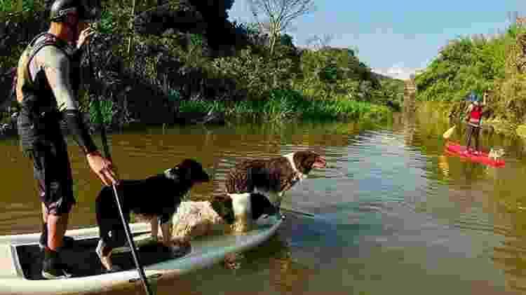Stand Up Paddle com cães em trecho tranquilo do Rio do Peixe, em direção à cachoeira  - Divulgação - Divulgação