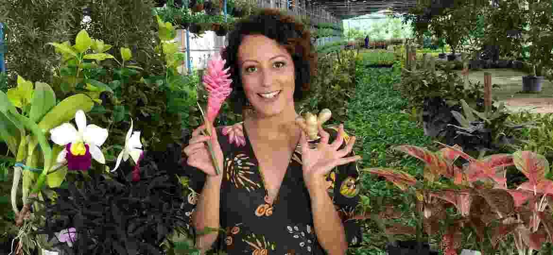 Carol Costa ensina a fazer uma horta improvisada em casa - Divulgação