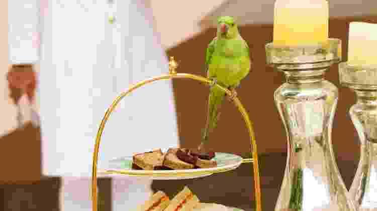 Café da tarde no Raj Mahal Palace - Divulgação