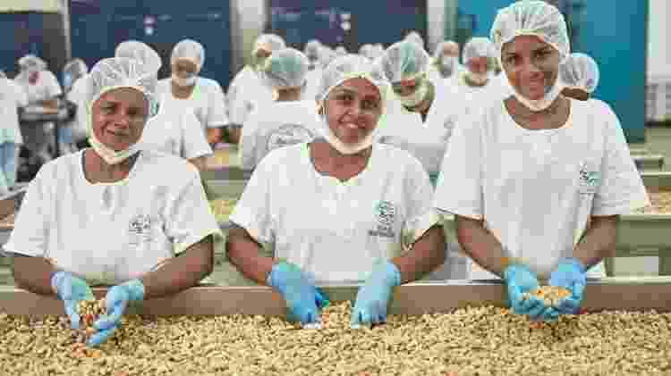 Em Catimbau, no município de Buíque, a Amigos do Bem mantém uma fábrica de beneficiamento de castanha, onde são empregadas 200 mulheres  - Divulgação/Amigos do Bem - Divulgação/Amigos do Bem