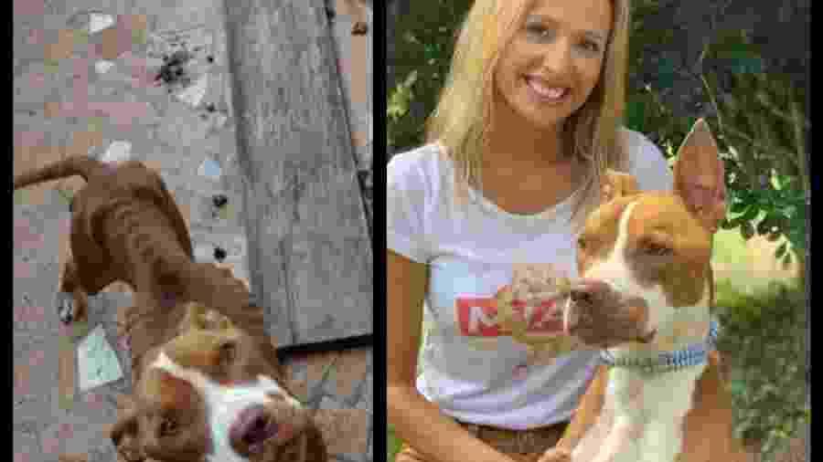 Luisa Mell resgata cãozinho maltratado e mostra sua evolução - Reprodução/Instagram