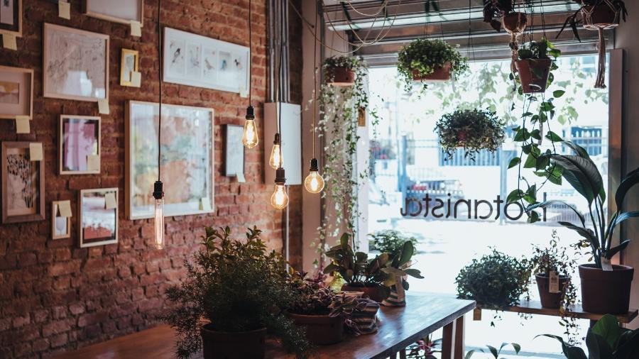 A Botanista é uma mistura de loja de arte e plantas, café e bar: um achado - Divulgação