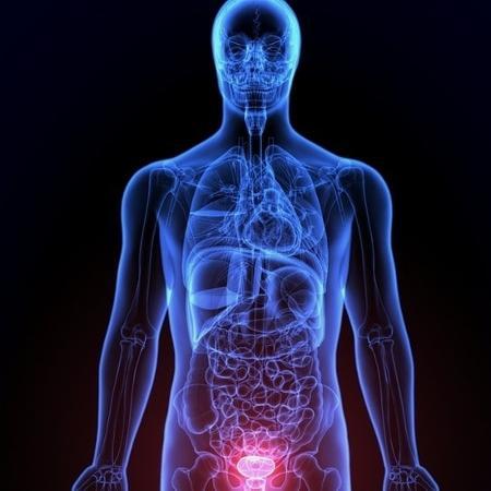 Médico brasileiro testou novas terapias hormonais para tratar o câncer de próstata avançado - Getty