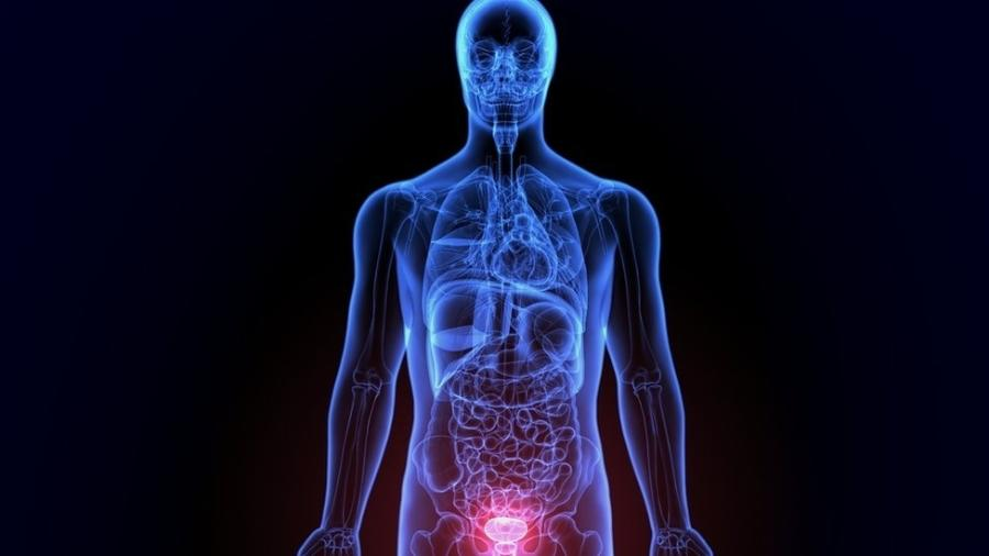 Resultado de imagem para Pesquisa da Unicamp utilizou vírus da zika no tratamento do câncer de próstata