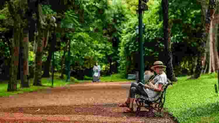 Belas trilhas e jardins compõe o agradável Jardin Botánico de Buenos Aires - Ente de Turismo de la Ciudad de Buenos Aires/Divulgação