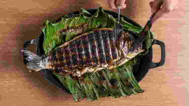 culinária amazônica - peixe banzeiro - Divulgação - Divulgação