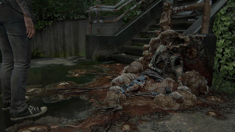 The Last of Us Part II - Reprodução