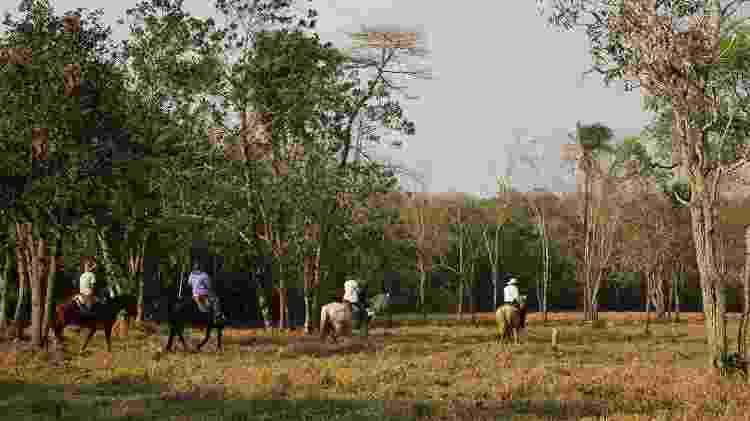 Passeio a cavalo na Estância Mimosa, na zona rural de Bonito  - Eduardo Vessoni/UOL - Eduardo Vessoni/UOL