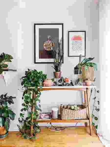 Jiboia colocada em mesa baixa - Reprodução/Pinterest - Reprodução/Pinterest