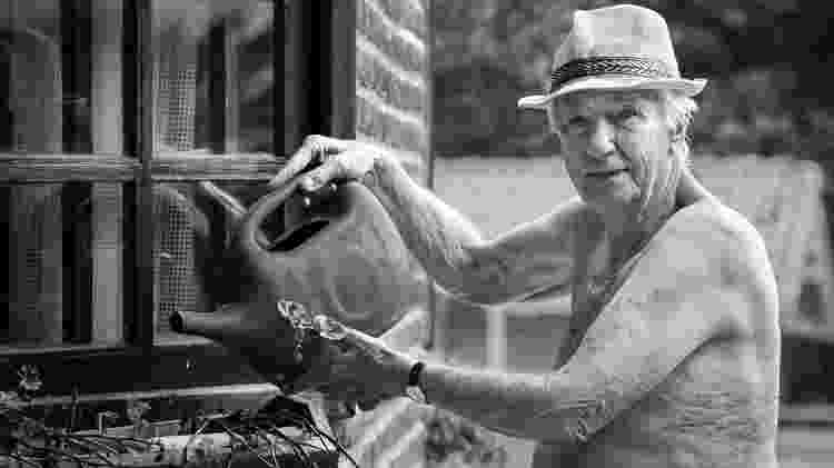 Homem idoso regando jardim - iStock - iStock