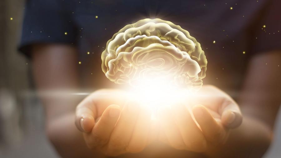 cerebro-1509645924402_v2_900x506.jpg