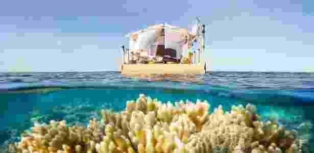A Grande Barreira de Corais Australiana tem o tamanho semelhante ao do Japão - Divulgação