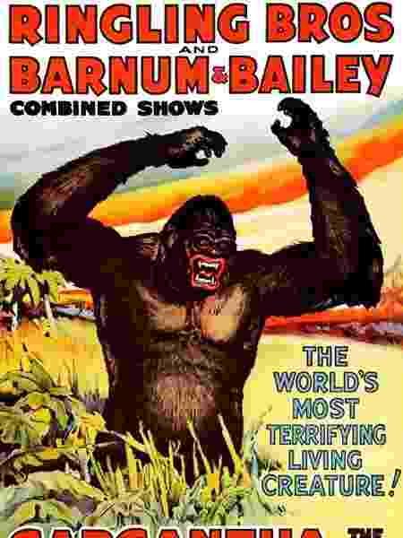 Cartaz do Ringling Bros, tradicional circo americano, anunciando a aparição de Gargantua, 'o maior e mais feroz gorila já trazido aos olhos do homem civilizado'. - WIKIMEDIA COMMONS - WIKIMEDIA COMMONS