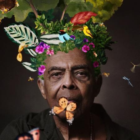 """Gilberto Gil no clipe de """"Refloresta"""" - Reprodução / YouTube"""