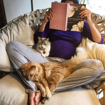 A atriz Carol Castro com os seus gatos de estimação - Reprodução/Instagram