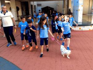 Pets na escola - Cada aluno leva seu mascote um dia na escola. São aceitos gatos, cães e até roedores - Divulgação - Divulgação