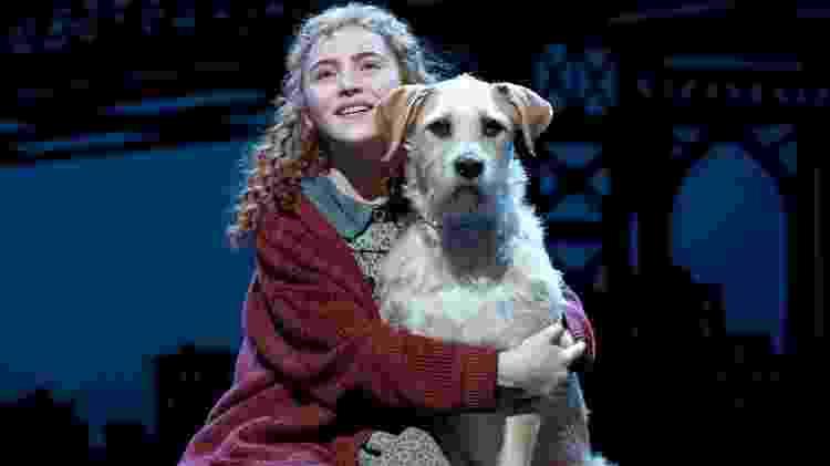 Annie: A história da garotinha órfã Annie e de seu simpático cachorro, Sandy, que conquistam o coração do milionário Oliver Warbucks e ainda precisam se livrar das artimanhas da tia Agatha, a trambiqueira que comanda o orfanato, chegou aos palcos em 1977, primeira vez em que o musical baseado na obra de Thomas Meehan foi encenado. A produção já acumula sete Tony Awards, incluindo o de Melhor Musical - Divulgação - Divulgação