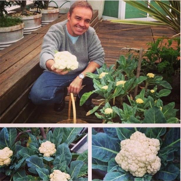 Apresentador Gugu Liberato planta couve-flor no jardim de sua casa