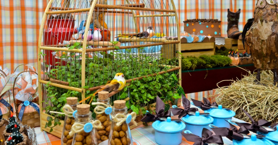 Enfeitada com plantas e pássaros, a gaiola enriquece o cenário típico de festa junina no aniversário de Enrico