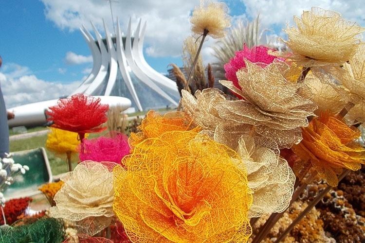 Feirinha de flores secas é um ponto tradicional do artesanato de Brasília, em frente à Catedral Metropolitana. O artesanato com flores secas é típico da cidade