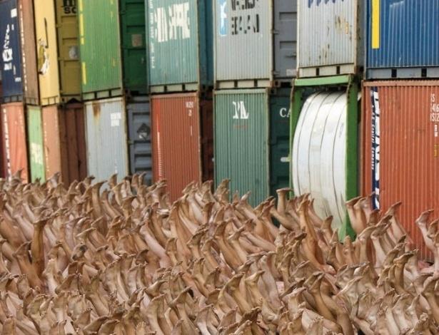11.setembro.2005 - Multidão se reúne na Bienal de Arte Contemporânea da França, em Lyon. A imagem foi feita no porto comercial Edouard Herriot