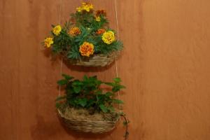 Faça floreiras charmosas usando cestinhas de vime ou outras fibras - Fernando Donasci/ UOL