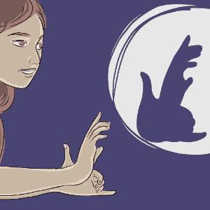 ilustração de esquilo para o álbum de animais com sombras - Jeff Camargo/UOL
