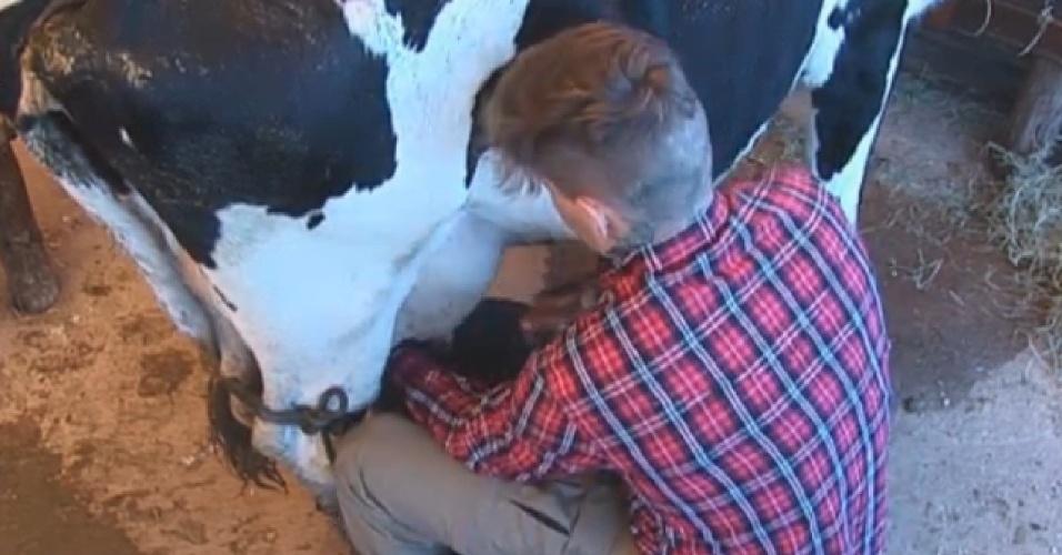 05.jul.2013 - Mateus Verdelho tira leite da vaca