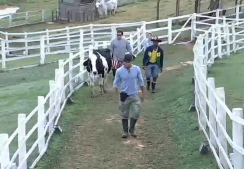 08.jul-2013 - Ivo Meirelles conta para Bárbara que Mateus ajudou Denise com os cavalos e modelo não esconde ciúme