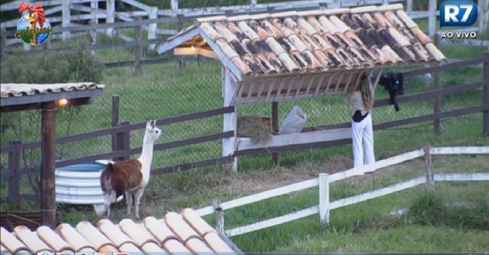 9.jul.2013 - A loira consegue colocar o animal no cercado, e coloca comida para os bichos