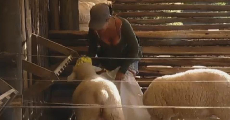 9.jul.2013 - Scheila Carvalho também já está cuidado da sua obrigação, e nã encontra dificuldades para cuidar das ovelhas.